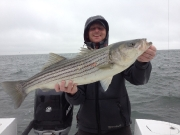 Sandy Hook Stripers