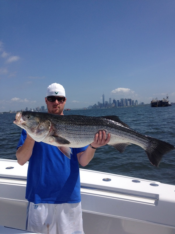 New York City Striper Charter