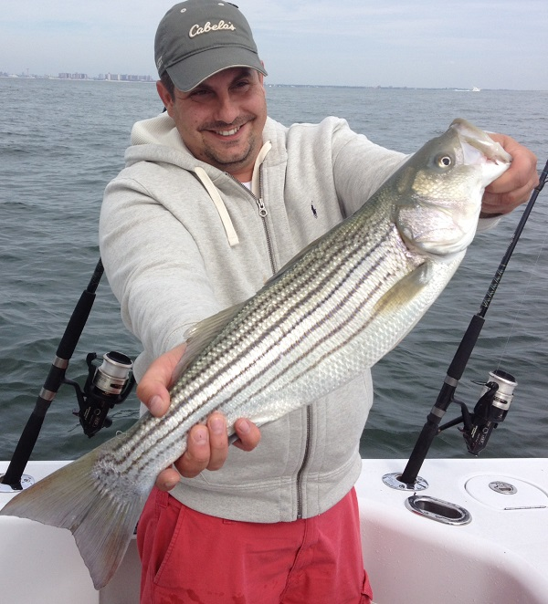 Nj salt fish 2013 10 21 bill chaser sandy hook for Fishing charters nj