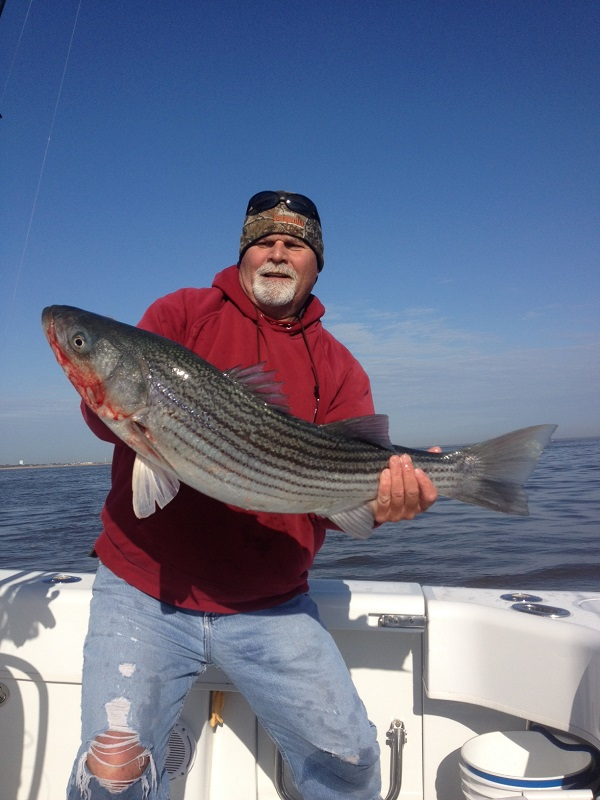 First Striped Bass Trip Of 2014 Season Bill Chaser Sandy