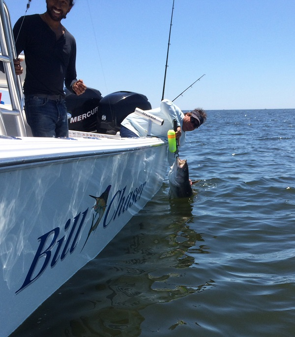 Charter fishing guide sandy hook raritan bay and the for Tuna fishing charters nj