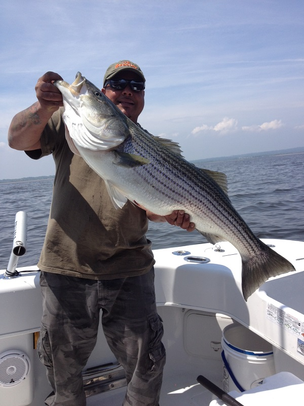 Striped Bass Charter