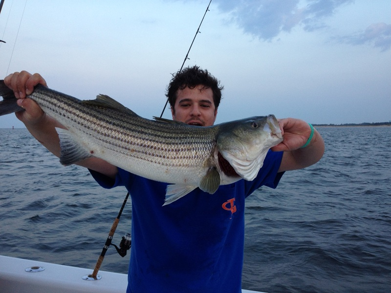 Fishing Reports Bill Chaser Sandy Hook Fishing Charters