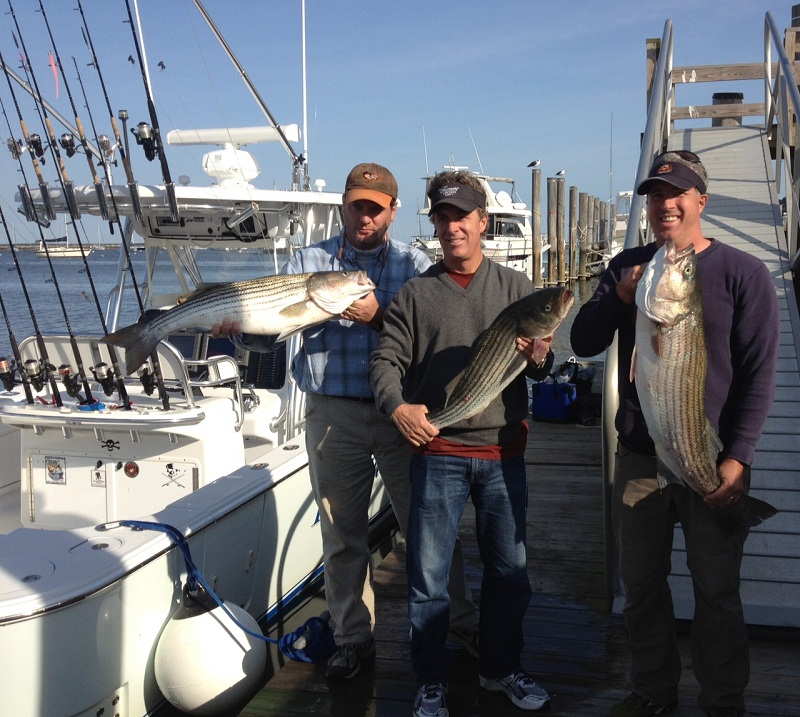 Raritan bay striper charters bill chaser sandy hook for Fishing charters nj