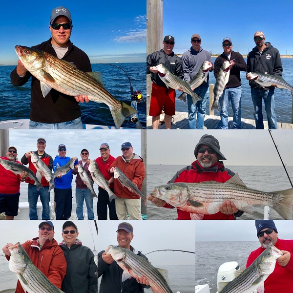 Striped Bass Fishing Charters