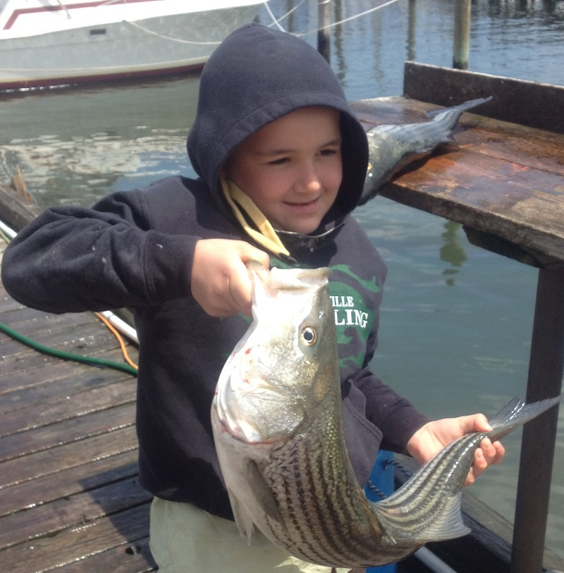 Chris's first Striped Bass