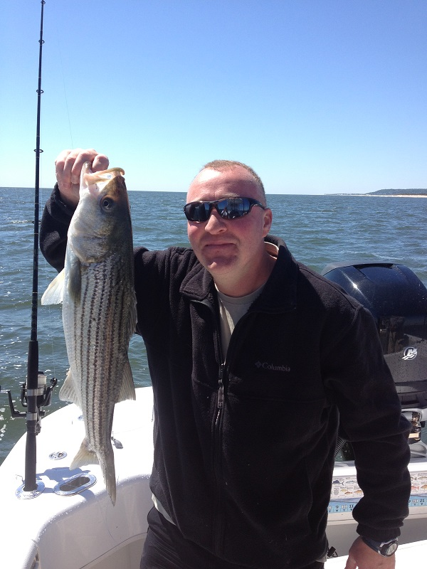 Short Striped Bass
