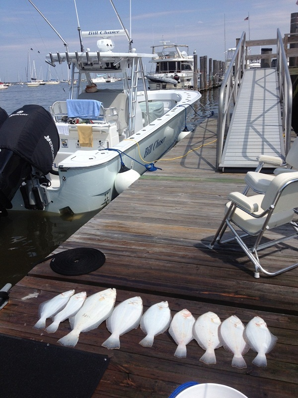 Sandy hook nj fluke charters bill chaser sandy hook for Fluke fishing nj