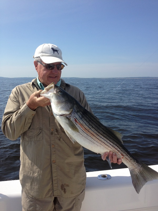 Sandy Hook New Jersey Fishing Charters Bill Chaser Sandy